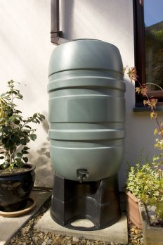 Plastic Rain Barrel